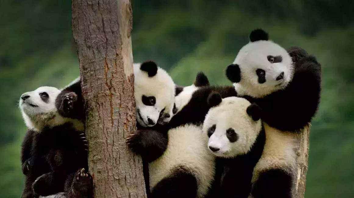 北京周末亲子游