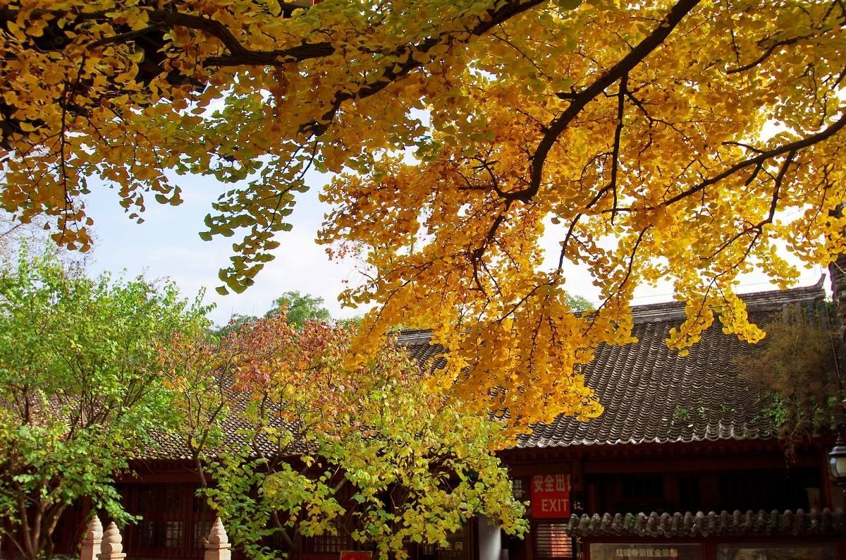北京怀柔红螺寺游记